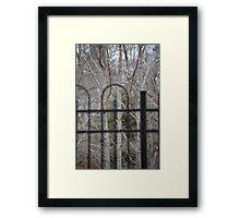 Trees through Fence Framed Print