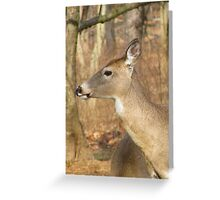 White Tail Deer Profile Greeting Card