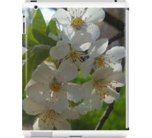 Blossom A iPad Case/Skin