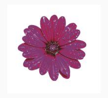 Purple Daisy After Rain T-Shirt