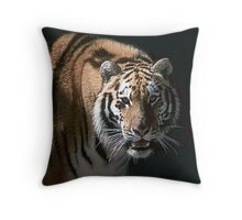 Missy the Sibeian Throw Pillow