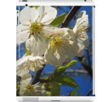 Blossom B iPad Case/Skin