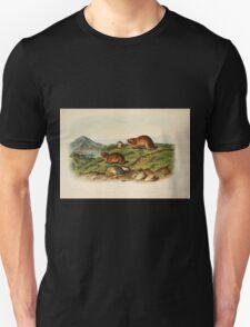 James Audubon - Quadrupeds of North America V3 1851-1854  Tawny Lemming Back's Lemming Unisex T-Shirt