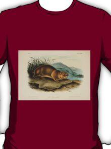 James Audubon - Quadrupeds of North America V3 1851-1854  Sewellel T-Shirt
