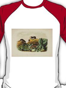 James Audubon - Quadrupeds of North America V2 1851-1854  Jay's Least Shrew T-Shirt