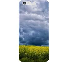 I sense there's something in the wind iPhone Case/Skin