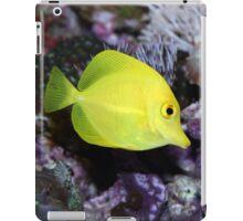 Tropical fish iPad Case/Skin