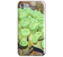 Beautiful coral iPhone Case/Skin