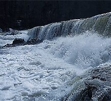 I dare you to jump in, Aysgarth Falls by Funkylikeabee