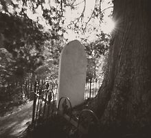 Walhalla Cemetery by ShaneBooth