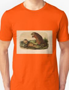 James Audubon - Quadrupeds of North America V1 1851-1854  Maryland Marmot Woodchuck Groundhog T-Shirt