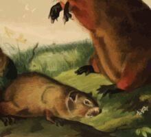 James Audubon - Quadrupeds of North America V1 1851-1854  Maryland Marmot Woodchuck Groundhog Sticker
