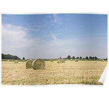 Agriculture landscape Poster