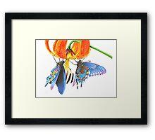 Ephemeral love Framed Print