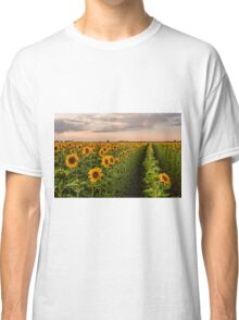 Sunflower Soldiers and A Colorado Rockies Storm Classic T-Shirt