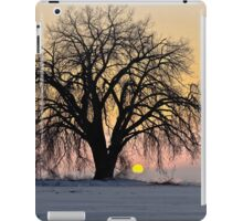 Cottonwood Cold Sunrise iPad Case/Skin