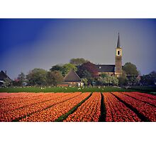 Holland in Spring Photographic Print