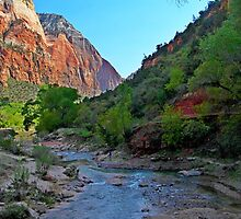 Zion National Park by Dipali S