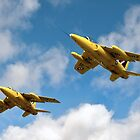 1964 Yellowjacks -  The Forerunners of the Red Arrows by © Steve H Clark Photography