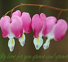 My love for you grows and grows... by Dipali S
