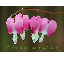 My love for you grows and grows... Photographic Print