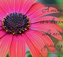 A winner is a dreamer who never gives up. by Dipali S