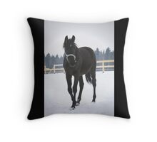 young foal Throw Pillow