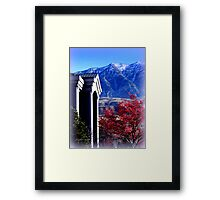 A Splash of Red in Winter Framed Print