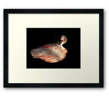 A Simple Beauty Framed Print