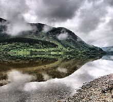 Stump by Loch Lubnaig by Julian MacDonald