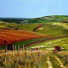 Lancing Downland by Paula Oakley