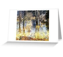 Surgeon Creek Overflow Greeting Card