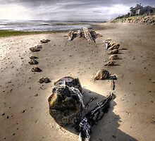 The Hammer Shipwreck Cape Cod HDR by capecodart