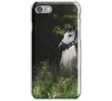 Horse in the meadow  iPhone Case/Skin
