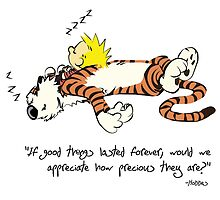 Calvin And Hobbes forever Quote  by JackCustomArt