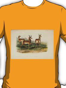 James Audubon - Quadrupeds of North America V2 1851-1854  Prong Horned Antelope T-Shirt