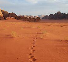 Footprints, Wadi Rum, Jordan by aceluke