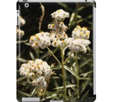 Western Pearly Everlasting iPad Case/Skin