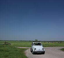 Fiat 500 in Dutch landscape by rayart