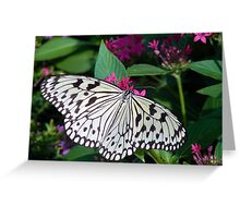 Ricepaper Butterfly Greeting Card