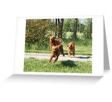 Flyin Trio '09 Greeting Card
