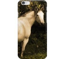 The wind of heaven is that which blows between a horse's ears iPhone Case/Skin