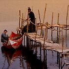Preparing the nets by Jose Saraiva