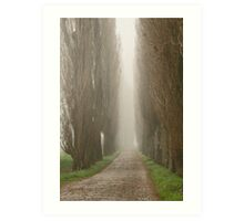 The road less travelled Art Print