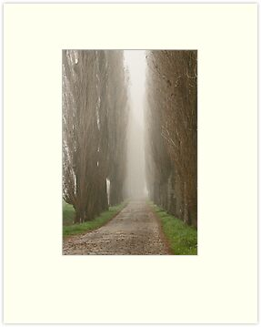 The road less travelled by Jeanne Horak-Druiff