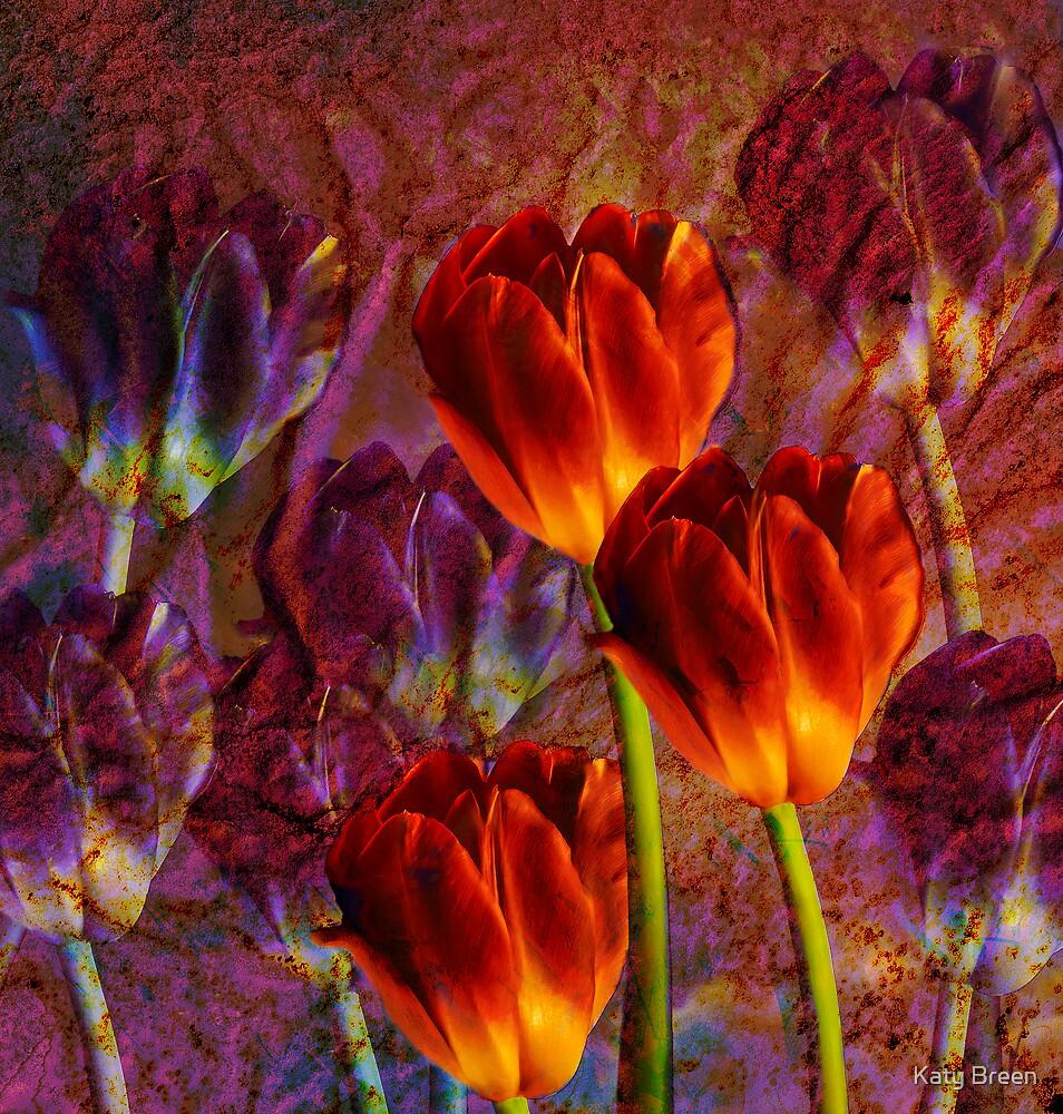 Tulip Field by Katy Breen