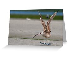 Reach for the sky !! Greeting Card