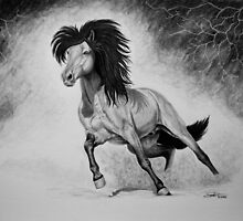 """A Free & Untamed Spirit"" - Charcoal portrait by SD 2010 Photography & Equine Art Creations"