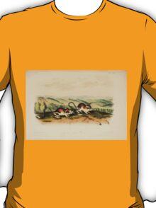 James Audubon - Quadrupeds of North America V3 1851-1854  Pouched Juboa Mouse T-Shirt