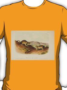 James Audubon - Quadrupeds of North America V1 1851-1854  Richardson's Spermophile T-Shirt